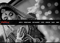 Wedding Studeo Chandigarh - Website Designed & Developed By AMS Informatics